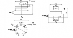 Weigh Module for RTN Load Cells